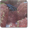 Overview of single drainfield trench